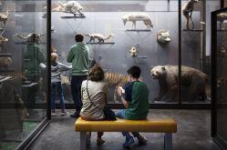 Museum Aquarium